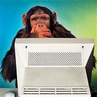 tecnico computer agosto